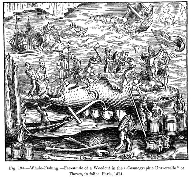 Woodcut from 1574, showing men flensing a whale (Hull Museums)
