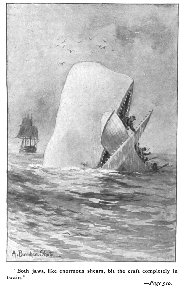 Moby Dick book illustration, p510