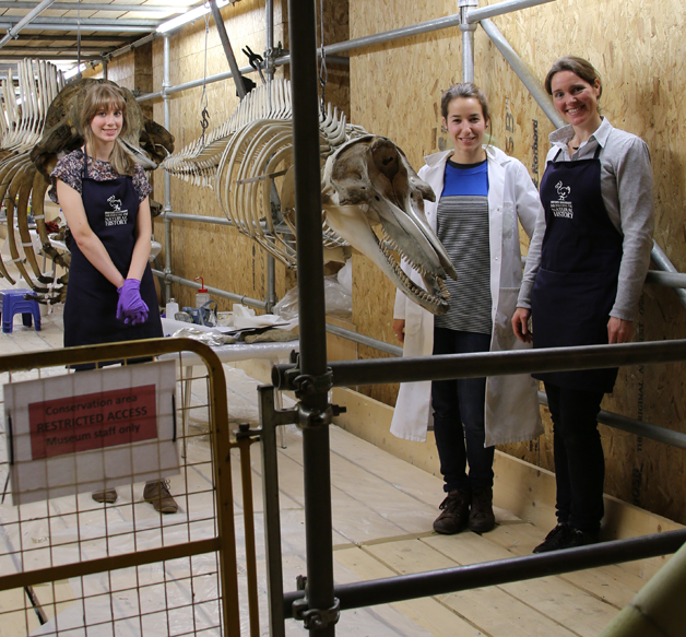 The Once in a Whale Team - Nicola Crompton, Bethany Palumbo and Gemma Aboe (left to right)